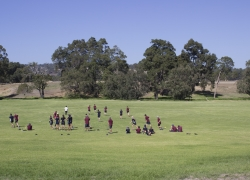 New School - Oval