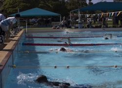 Swimming Carnival